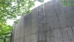 Vertical Fall Arrest Systems